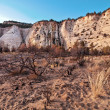 Cliffs in zion national park - Stock Photo