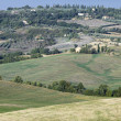 Distance view of green meadow in tuscany — Foto Stock