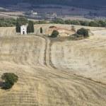Landscape road of tuscany — Stock Photo