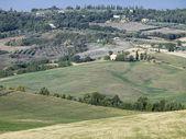在托斯卡纳的绿色草地上的距离视图 — 图库照片