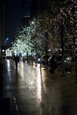 Electric lights on trees in new york city at night — Stock Photo