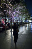 Glowing lights on trees in new york city — Stock Photo