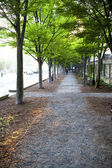 Outdoor walkway — Stock Photo