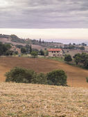 View of fields in tuscany — Stock Photo
