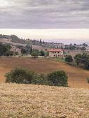 Visualizzazione dei campi in toscana — Foto Stock