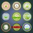 Royalty-Free Stock Vector Image: Organic labels, badges and stickers