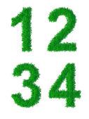 Zelené trávě abeceda — Stock vektor