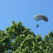 Paratrooper — Photo