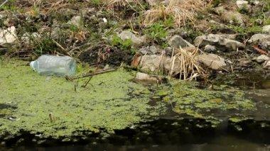 Plastic bottles in river — Stock Video
