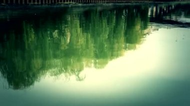 Reflection on river — Stok video