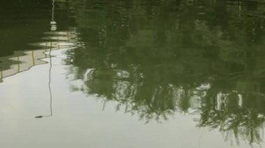 Reflection on river — 图库视频影像