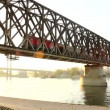 Train on the bridge — Stok video