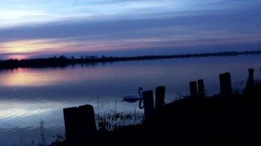 Prachtige zonsopgang — Stockvideo