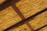 Reedy roof — Stock Photo