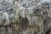Soil layers — Stock Photo