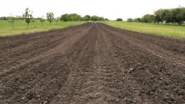 Raw soil grain cereal agricultural plowed field ground raw soil — Stock Video