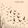 Flying birds, silhouettes - Imagens vectoriais em stock