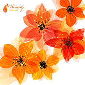 Orange flowers — Stock Vector