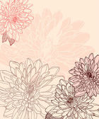 Hand drawn chrysanthemum — Stock Vector