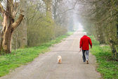 Man walking dog — Stock Photo