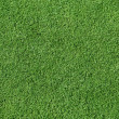 Stock Photo: Smooth, Short Trimmed Grass