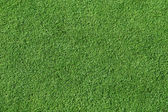Smooth, Short Trimmed Grass — Stock Photo