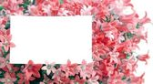 White copyspace in red flowers — Stock Photo
