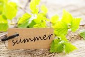 Label with summer — Stock Photo