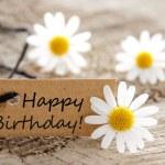 Happy birthday — Stock Photo #26182475
