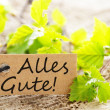 Stock Photo: Label with Alles Gute!