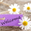 Banner with Welcome — Stock Photo