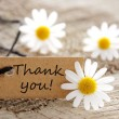 Natural looking label with thank you — Stock Photo #26357903