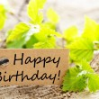 Label with happy birthday — Stock Photo