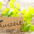 Stock Photo: Label with Auszeit