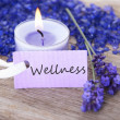 Stock Photo: Wellness on purple label