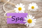Purple label with Spa — Stock Photo