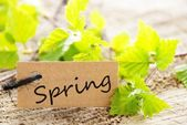 Label with Spring — Foto Stock