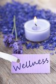 Wellness on purple label — Stock Photo