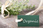Etiqueta verde con orgánico — Foto de Stock