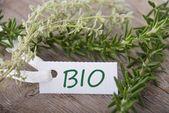 Vit etikett med bio — Stockfoto