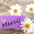 Stock Photo: Purple Label with Merci