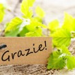 Stock Photo: Label With Grazie