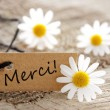 Stock Photo: Natural Looking Label with Merci