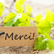 Stock Photo: Label With Merci