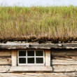 Cottage With Green Roof — Stock Photo