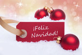 Red Tag With Feliz Navidad — Stock fotografie