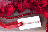 Valentines Background — Stock fotografie