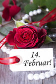 Valentines Background — Foto de Stock