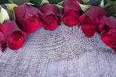 Background with red Roses — Стоковое фото