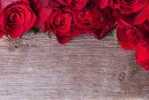 Fond avec des roses — Photo